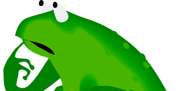 Image result for confused frog